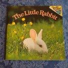 The Little Rabbit Random House Pictureback Book Judy Dunn Children's Storybook