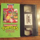 Teenage Mutant Ninja Turtles Invasion of the Turtle Snatchers Vhs Tape Video 1M
