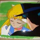 Sailor Moon Tuxedo (Kamen) Mask And Sailor Moon
