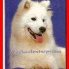 Dog Samoyeds By Joyce Renaud ~ Copyright 1983 VGd Cond