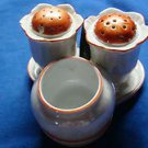 Vintage Noritake Salt & Pepper & Mustard Condiment Set with Tray ~4 Pieces~Japan