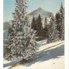 Post Card Europe Germany Die Alpspitze Wintersonne VTG