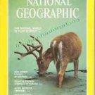 Book National Geographic Magazine 1981 (11) November ~ Vol 160, No 5 ~ VGC