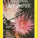 Book National Geographic Magazine 1980 (04) April~ Vol 157, No 4 ~ VGC