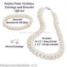 Necklace, Bracelet & Earring Perfect Poise 3 Piece Gift Set SILVERTONE NEW Boxed