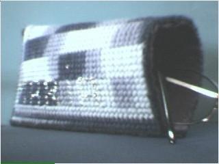 Eye Glass Case
