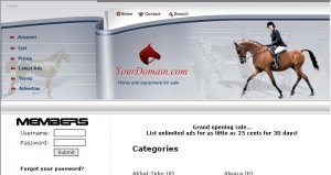 Horse Classifieds
