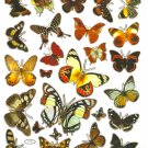 10 sheets C141 Realistic A4 Butterfly Sticker for Scrapbooking etc