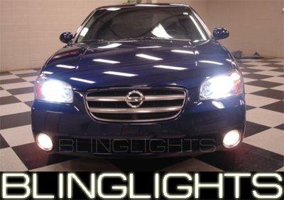 2000-2003 Nissan Maxima Green Halo Fog Lamps 2001 2002