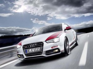 "Audi S5 Eibach Project Car Poster Print on 10 mil Archival Satin Paper 20"" x 15"""