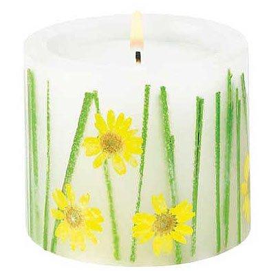 Darling Daisies Candle