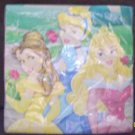 Package of (16) Disney Princess Party Lunch Napkins.