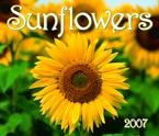 SUNFLOWERS DELUXE 2007 WALL CALENDAR