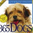 365 DOGS PAGE-A-DAY 2007 DAILY BOXED CALENDAR-ORDER 2 OF THIS ITEM FOR FREE SHIPPING!