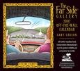 THE FAR SIDE 2007 DESK CALENDAR