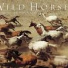 WILD HORSES 2007 DELUXE WALL CALENDAR-20%OFF THIS ITEM!