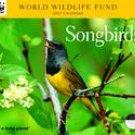 SONGBIRDS WWF 2007 DELUXE WALL CALENDAR