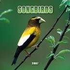 SONGBIRDS 2007 MINI WALL CALENDAR