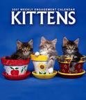 KITTEN 2007 HARDCOVER ENGAGEMENT CALENDAR
