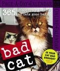 BAD CAT PAGE A DAY 2007 DESK CALENDAR
