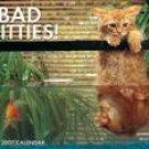 BAD KITTIES 2007 WALL CALENDAR