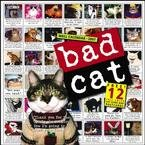 BAD CAT 2007 WALL CALENDAR