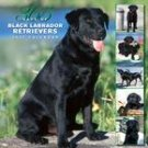 365 DAYS OF BLACK LABRADOR RETRIEVERS 2007 WALL CALENDAR