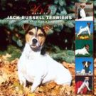 365 DAYS OF JACK RUSSELL TERRIERS 2007 WALL CALENDAR