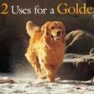12 USES FOR A GOLDEN 2007 WALL CALENDAR