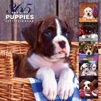 365 PUPPIES A YEAR WALL CALENDAR-ORDER 2 OF THIS ITEM FOR FREE SHIPPING!