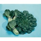 ASIAN GREENS*TATSOI******ORGANIC*******100 SEED!