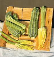 ZUCHINNI**COSTATA ROMANESCO***HEIRLOOM****10 SEED
