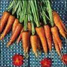 CARROT**ST. VALERY***HEIRLOOM****100 SEED