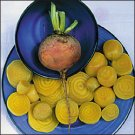 BEET-BURPEE'S GOLDEN****HEIRLOOM & ORGANIC***1,000 SEED
