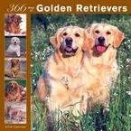 365 Days of Golden Retrievers 2008 Wall Calendar