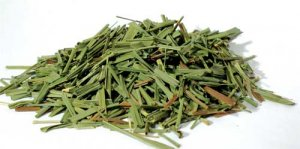 1lb Lemon Grass cut