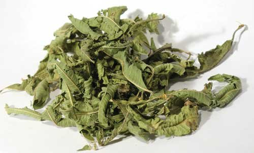 1lb Lemon Verbena Leaf Cut