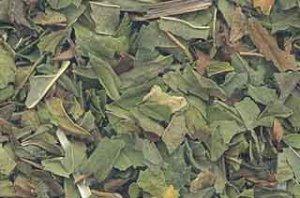 1lb Peppermint Leaf Cut