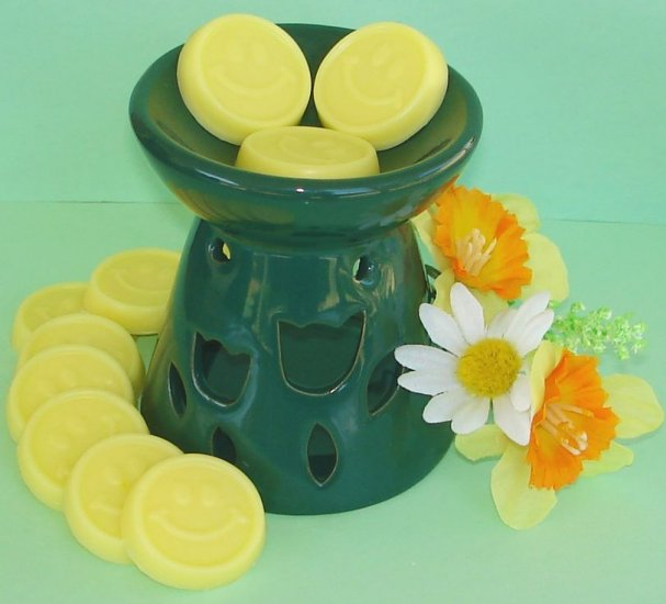 Candle Gift Set - 12 Scented, Soy Wax Smilie Melties & Tart Burner