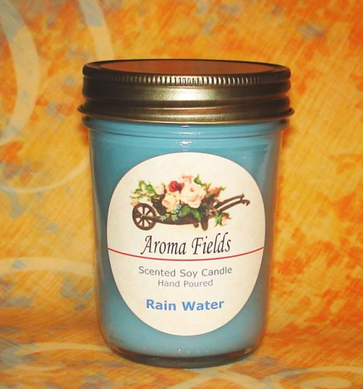 Rain Water - Highly Scented Soy Candle