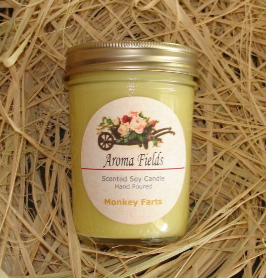 SALE - Monkey Farts - Highly Scented Soy Candle