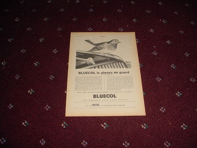 1954 Bluecol Antifreeze ad from the UK