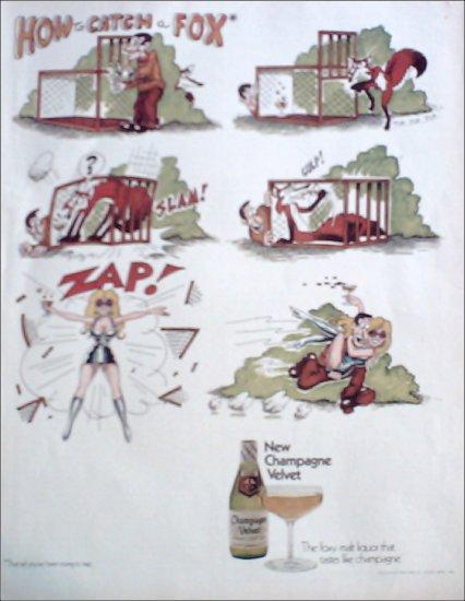 1972 Champagne Velvet Malt Liquor ad #1