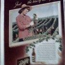 1947 Schlitz Beer ad #4