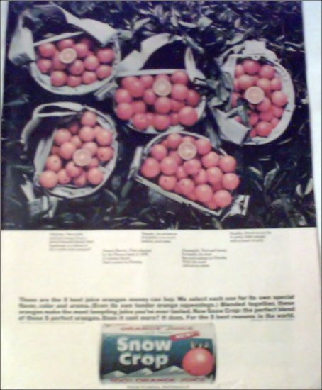 Snow Crop Orange Juice ad