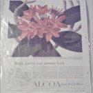 1951 Alcoa Steamship Company ad