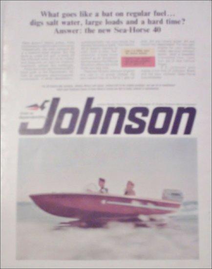 1966 Johnson Sea-Horse 40 Motor ad