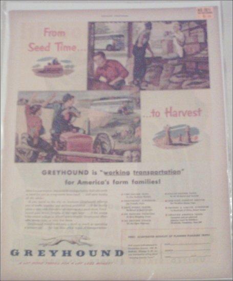 1951 Greyhound Bus Lines ad