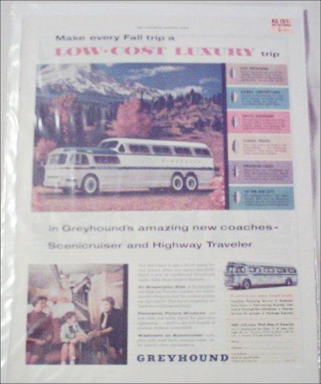 1956 Greyhound Bus Lines ad