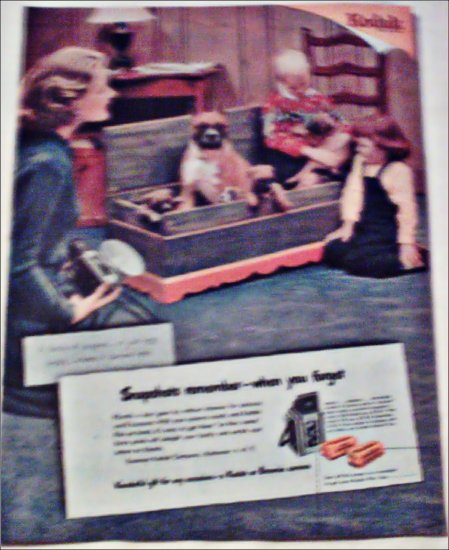 Kodak Camera Boxer Pups ad